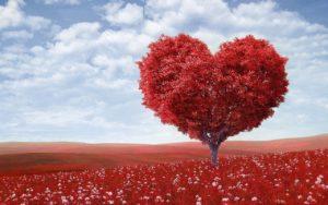 La Tierra, una Escuela de Amor